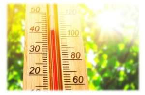 temperature - staying hydrated in the heat
